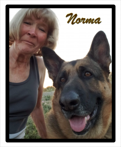 Norma2