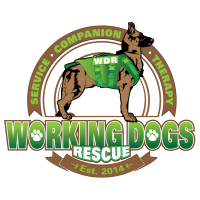 Working_Dogs_Rescue_F_PNGFiles_TRansparent_Backgrounds_New-05